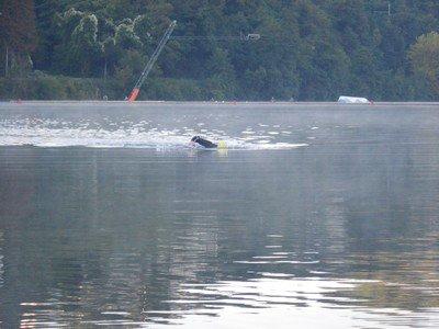 Samedi 11 Septembre 2010 : Pré-fishing...