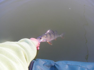 Pré-fishing (partie 2)