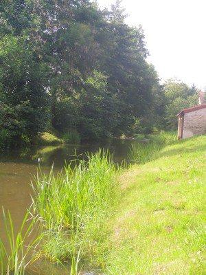 Vendredi 29 juillet 2011 : retour à la rivière