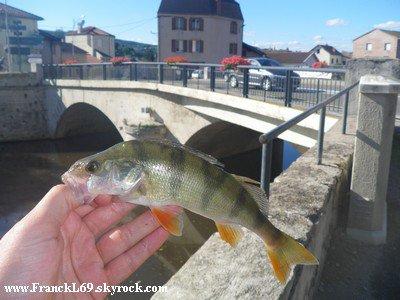 Mardi 16 août 2011 : une pêche difficile