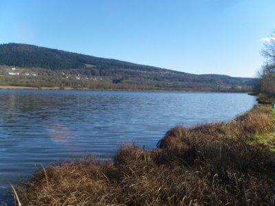 Vendredi 11 novembre : balade irlandaise... en Bugey