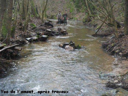 Samedi 28 Janvier 2012 : travaux d'hiver (partie 2)