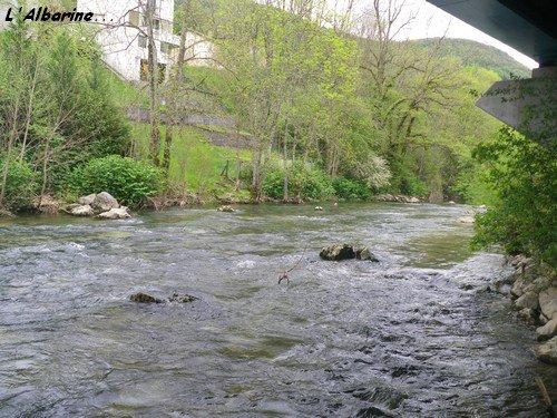 Lundi 30 Avril 2012 : l'Albarine l'envoûtante...