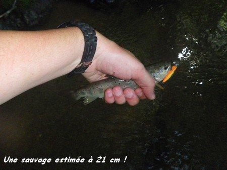 Vendredi 1er Juin 2012 : coup du soir + fête de la pêche
