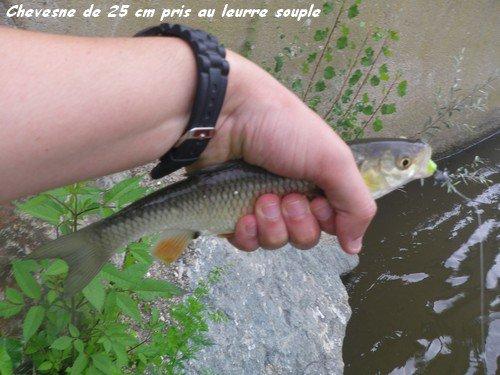 Vendredi 13 Juillet 2012 : coup du soir...