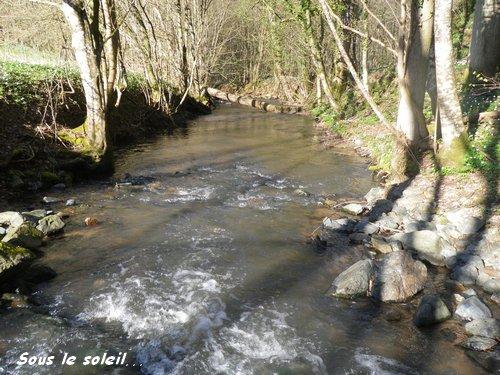 Dimanche 14 Avril 2013 - Et au milieu coule... un ruisseau