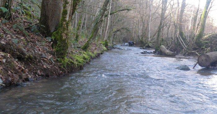 Bénévolat : action pour les rivières...