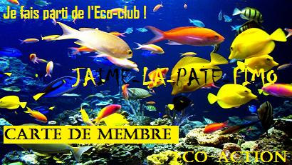 L'Eco-club, newletters et avantage