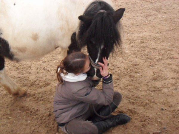 Mon pony !!