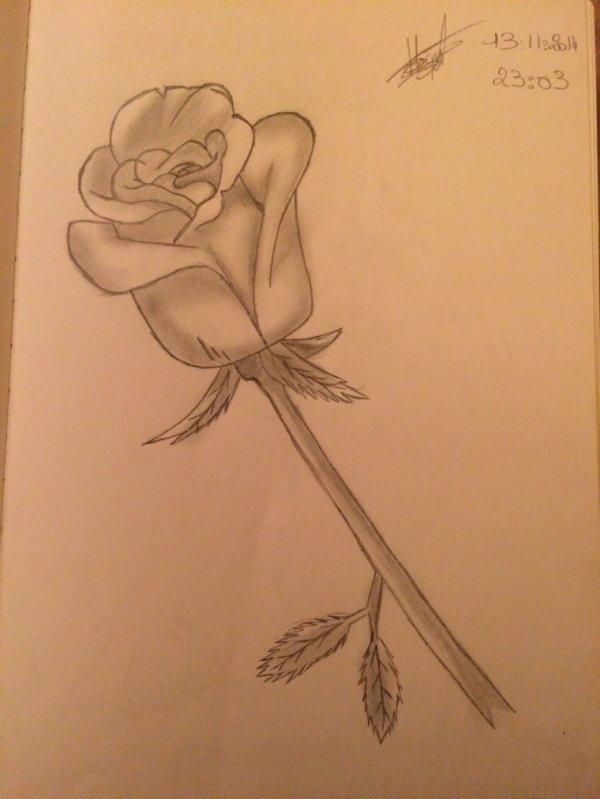 Mes dessins ❤️
