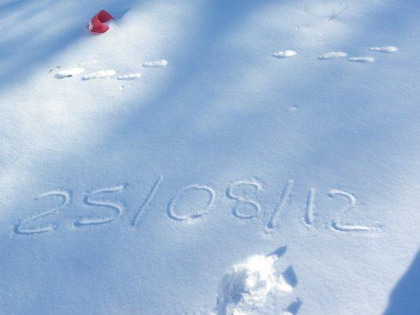 lundi 06 février 2012 17:32