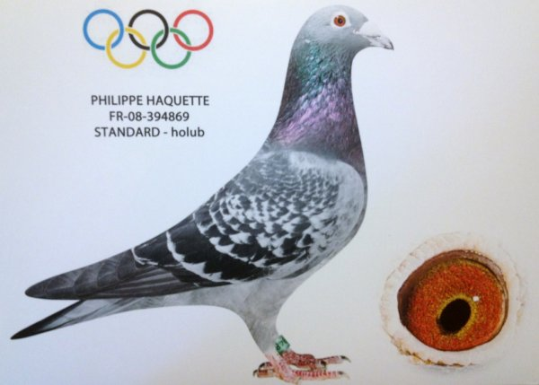 Olympiade 2013