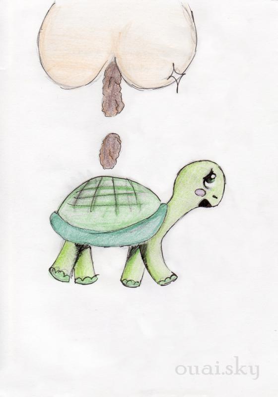 """41/ Pouka : """" Autant chier sur une tortue"""""""