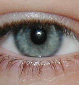 vive mes yeux