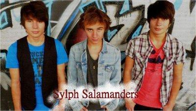 Sylph Salamanders