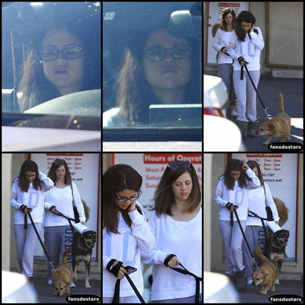 24/11/2012 : Selena et sa mère sortant d'une clinique vétérinaire dans le quartier d'Encino en Californie avec leurs chiens :)