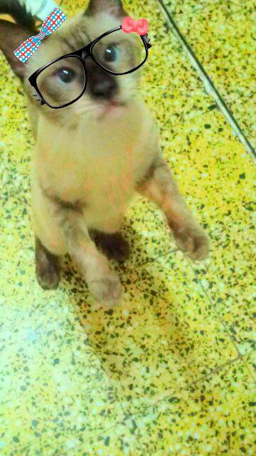 LiTTle BaBy ♥♥♡♥♥