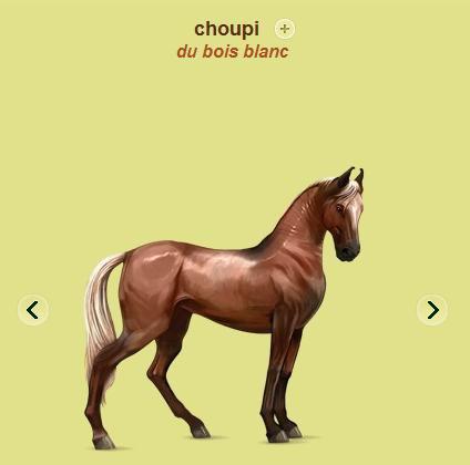 choupi