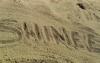 fanshinee-fic