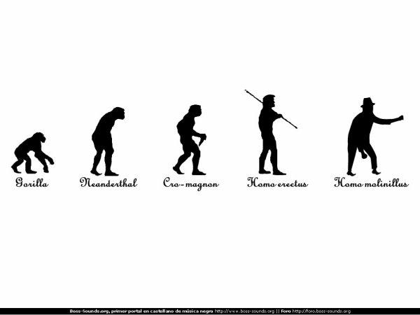 evolution of girls...:)))