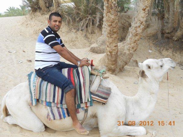 sur l chameau