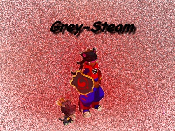 Steameur