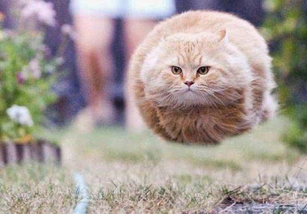 I'm flying *-*