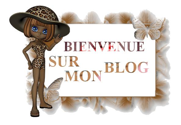 Bienvenue sur mon blog pour filles