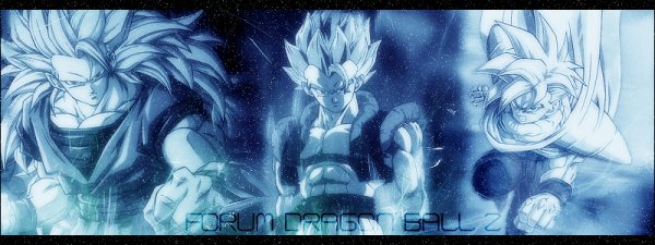 『 Dragon Ball Z 』
