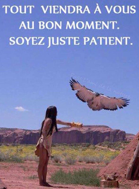 indien et l aigle