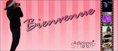 Notre partenaire ( sponsor) Adelinestoop