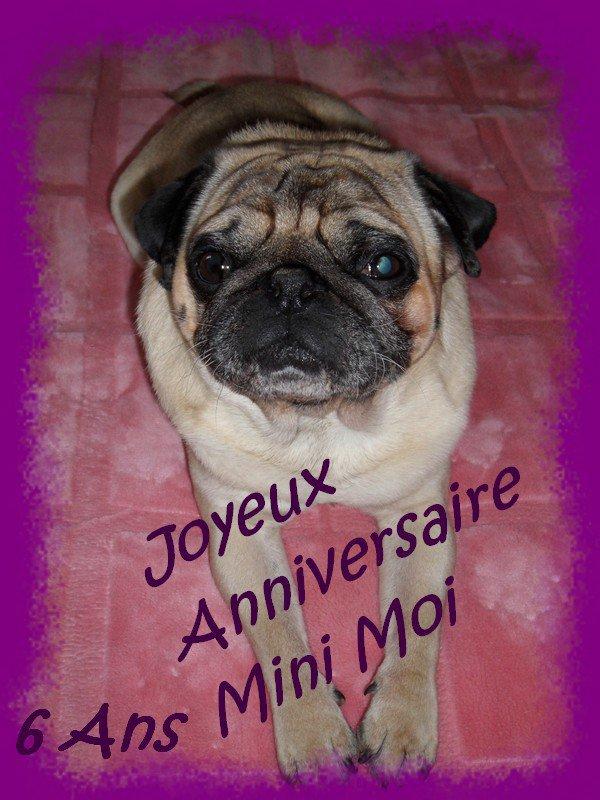 JOYEUX ANNIVERSAIRE MINI MOI  ! ! !
