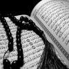 Muslima-no-terrorist