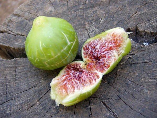 fruit kabyle