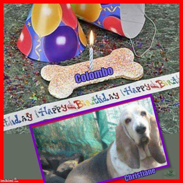 Bon anniversaire Colombo.