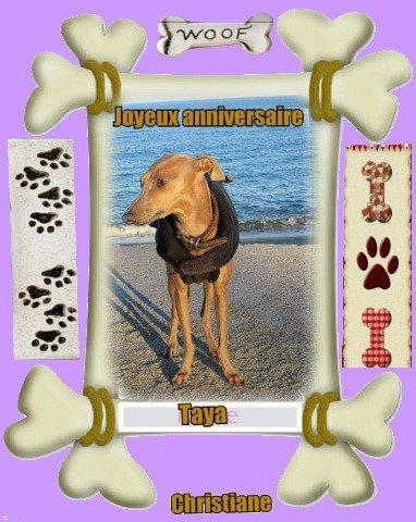 Bon anniversaire Melle Taya