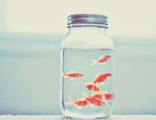 Des fois, tout ce que tu veux, c'est partir loin d'ici, commencer une nouvelle vie, ne pas faire les mêmes erreurs.