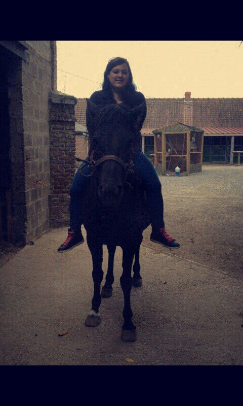 Il n'y a pas de secret aussi intimes que ceux d'un cavalier et de son cheval..