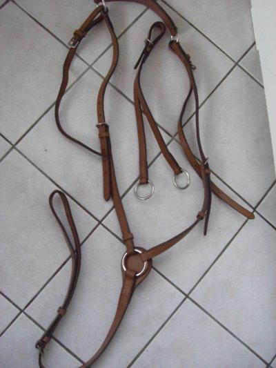 collier de chasse en cuir