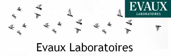 Partenariat avec la marque de cosmétiques : Evaux Laboratoires ♥