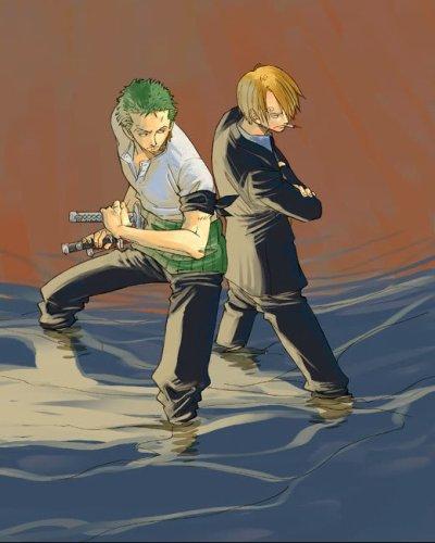 Commande n°2 : Parce que tout est de ta faute    ~ Zorro/Sanji~