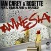 Amnesia / Ian Carrey, Rosette, Timbaland & Brasco - Amnesia (2012)