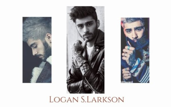 Logan S. Larkson