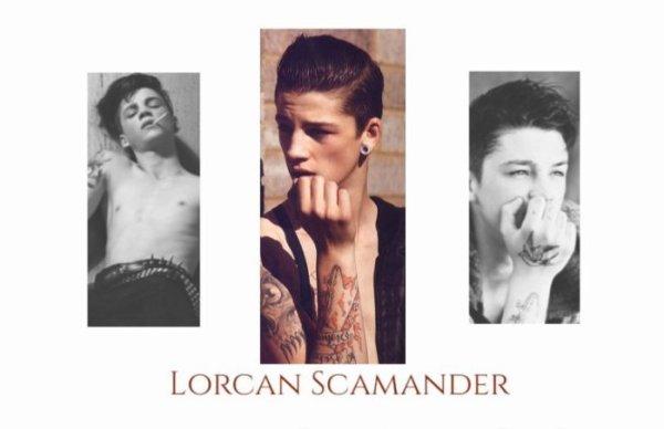 Lorcan Scamander