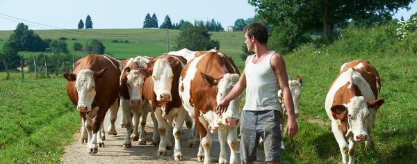 mon p'tit clin d'oeil aux agriculteurs ..noble métier mal payé