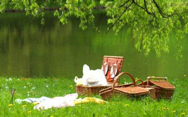 Bonjour, il est grand temps de profiter de cette dernière journée de plein soleil ...