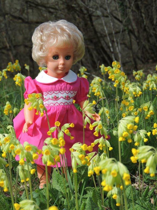 Les fleurs du grand bois