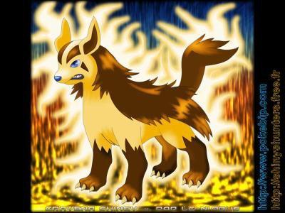 Hunter Pokemon Shiney