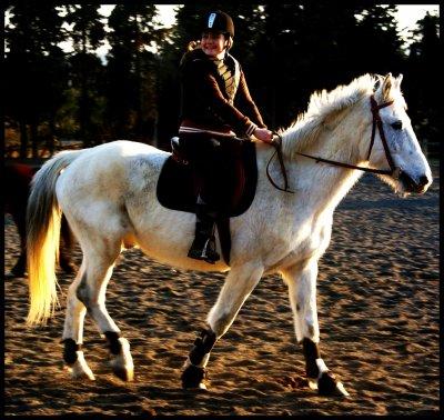 Dans l'équitation, ce n'est pas le résultat qui compte, mais la façon d'y parvenir. ♥