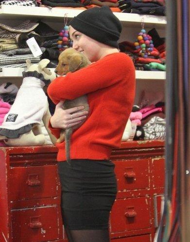 Le 26 novembre, Miley, sa soeur, Noah et sa mère ont été vu dans une animalerie à L.A., elles ont acheté un petit chiot TROP mignon. Elles l'ont appelé Penny Lane.